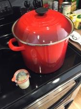 Le Creuset stock pot
